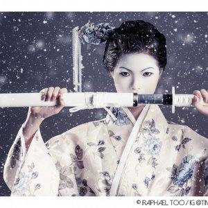 Geisha Warrior